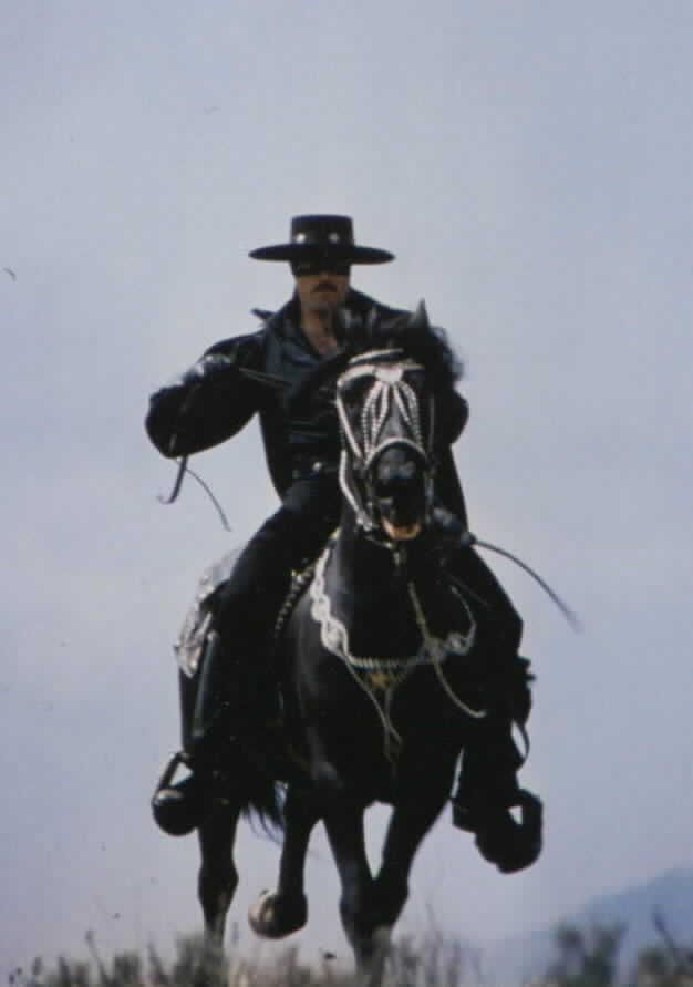 Zorro riding Toronado #1
