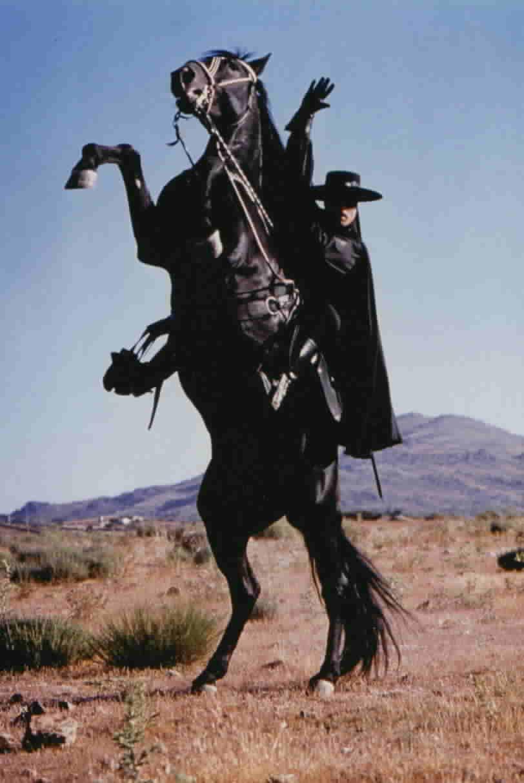 Toronado rearing while Zorro salutes